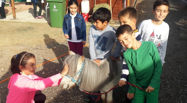 Ankara'da Pony Park Heyecanı Sürüyor! İşte Detaylar...