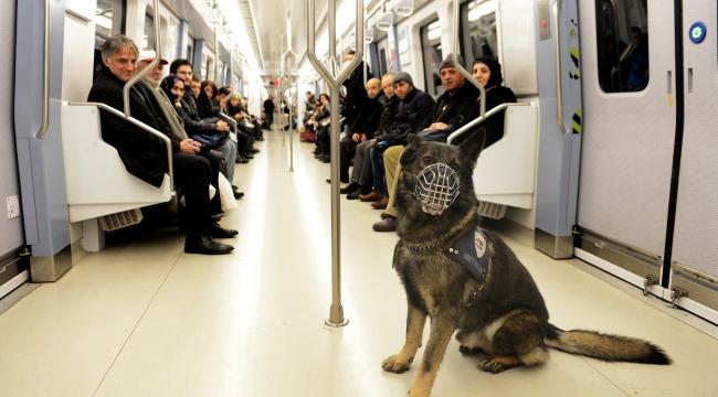 Metroda K-9 Köpekleriyle Güvenlik