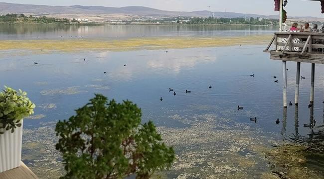 ''Mogan Gölümüze Sahip Çıkalım, Onu Birlikte Koruyalım''