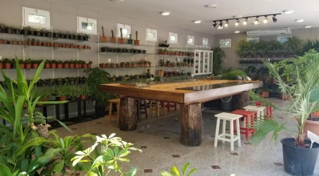 Ankara'da Bir İlk: Ücretsiz ''Bahçe Hobi Eğitimi''