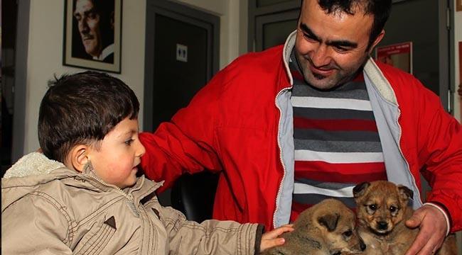 128 Sokak Hayvanına Yeni Yuva! Çankaya Belediyesi Sokak Hayvanlarını Sahiplendirmeye Devam Ediyor...