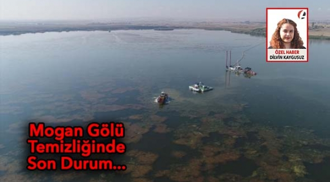 ÖZEL - Mogan Gölü Temizliği Devam Ediyor... İşte Son Durum...