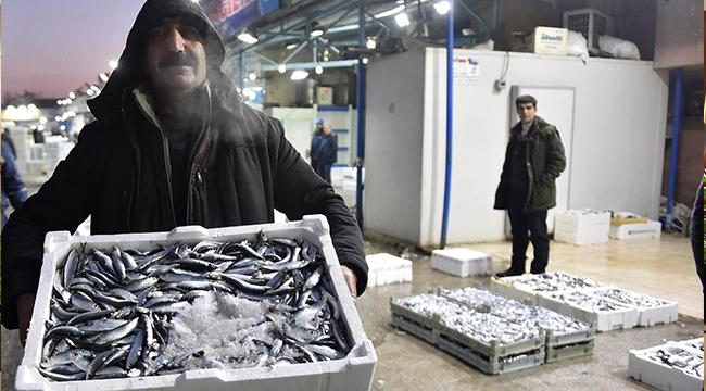 11 Bin 500 Ton Balık Tüketildi! Ankara Hamsiye Doydu...