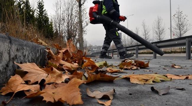 Başkent Sokaklarında Yaprak Temizliği