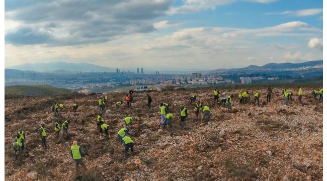 İzmir'e 10 yılda 28 milyon adet fidan