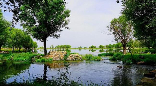 204 yeni millet bahçesi