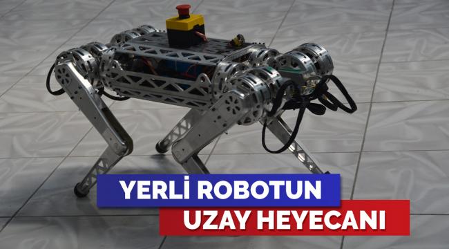 4 ayaklı robot