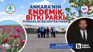 Ankara'nın Endemik Bitki Parkı Pursaklar Belediyesi'nden
