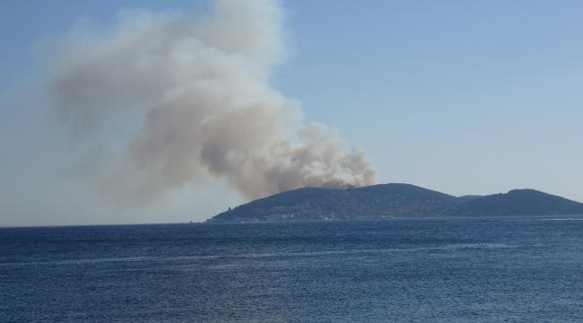 Heybeliada'da orman yangını, havadan ve karadan müdahale ediliyor