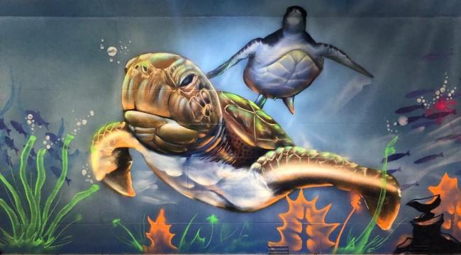 Sincan grafiti ile renkleniyor