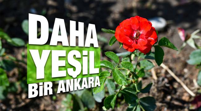 Daha yeşil bir Ankara