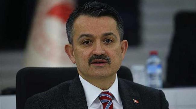 Tarım ve Orman Bakanı Pakdemirli  orman yangınları hakkında bilgi verdi