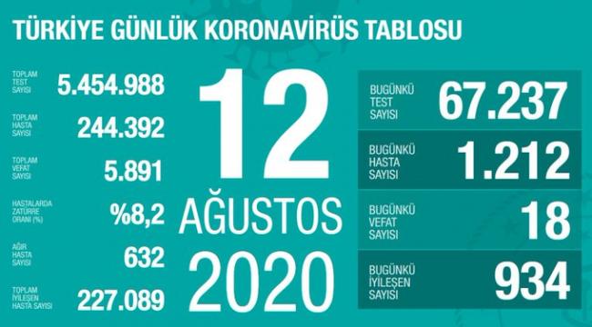 Türkiye'de ağır hasta sayısında 15 artış var