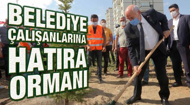 Belediye çalışanları için hatıra ormanı