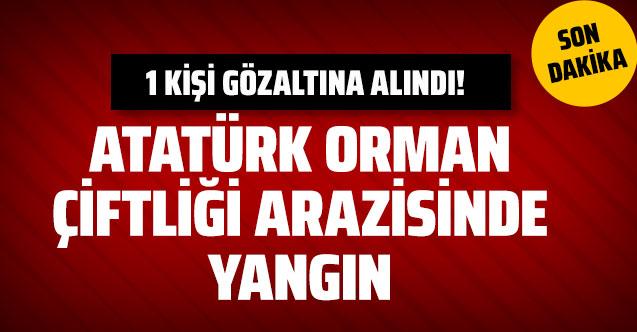 Son Dakika Ankara Atatürk Orman Çiftliği'nde yangın! Kundaklama mı?