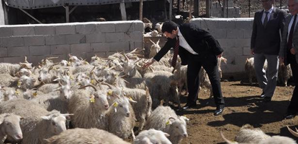 Ankaralı Çiftçiler Kaliteyi Kendi Ölçecek